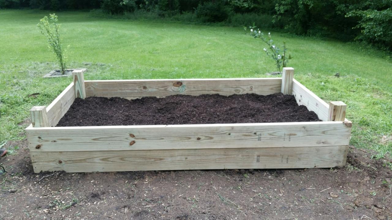 Raising a Garden